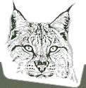 Woodcraft School Logo