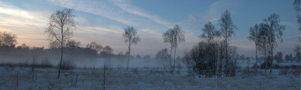 West Sussex dawn